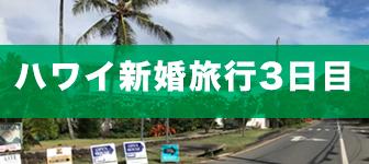 ハワイ新婚旅行3日目